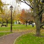 公園の違和感