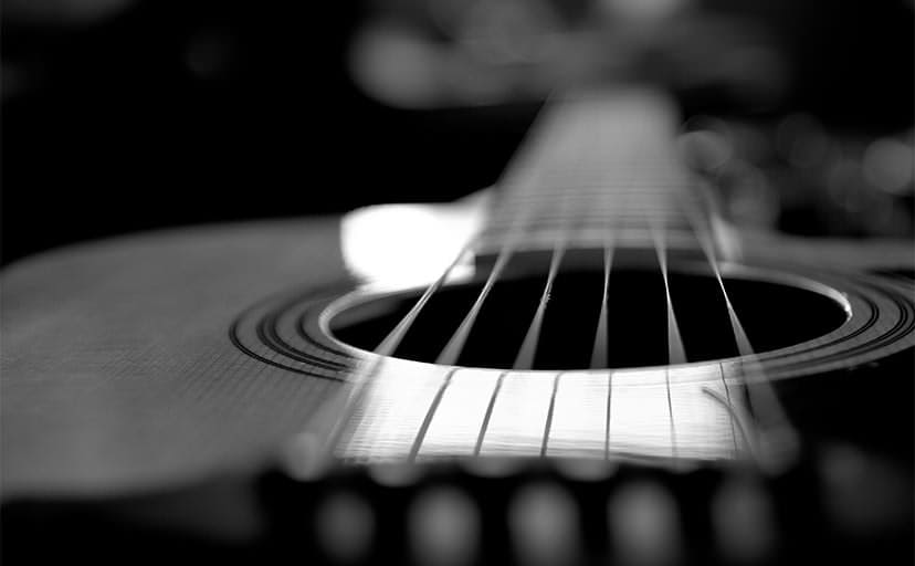acoustic_guitar_portrait-6816