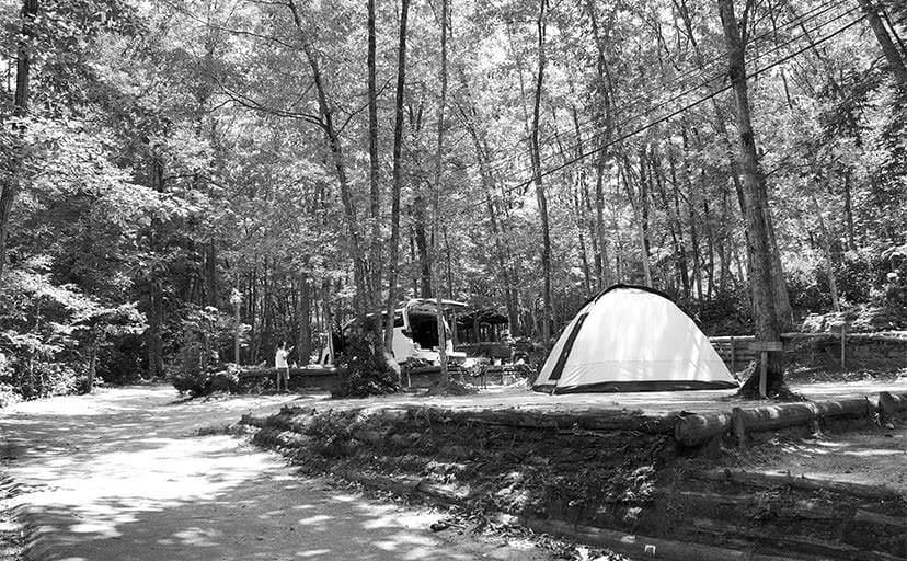 キャンプ場(フリー素材)
