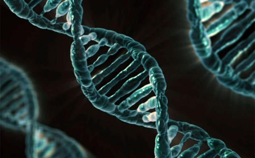 DNA(フリー画像)