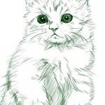 愛猫の最後の挨拶