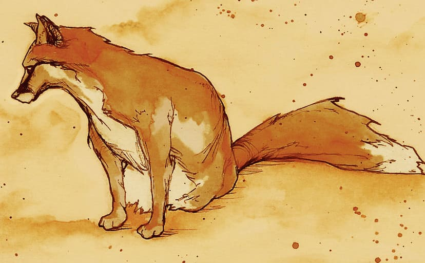 fox_by_mirrorcradle