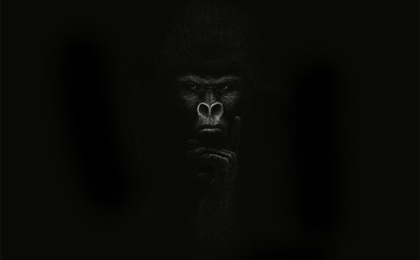 gorilla_by_logartis-d4ulttb