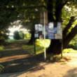 公園(フリー背景素材)