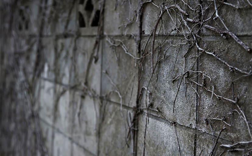 塀(フリー写真)