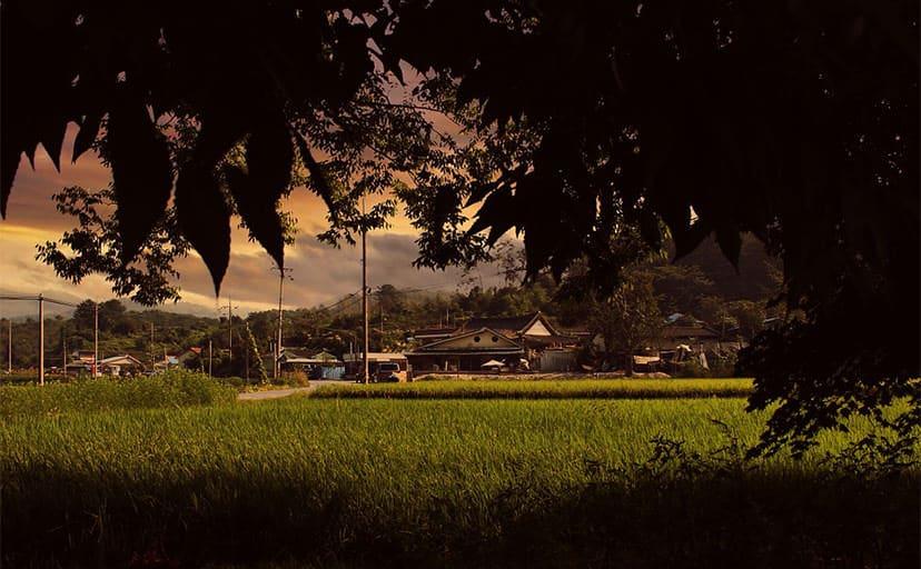 田舎の風景(フリー写真)