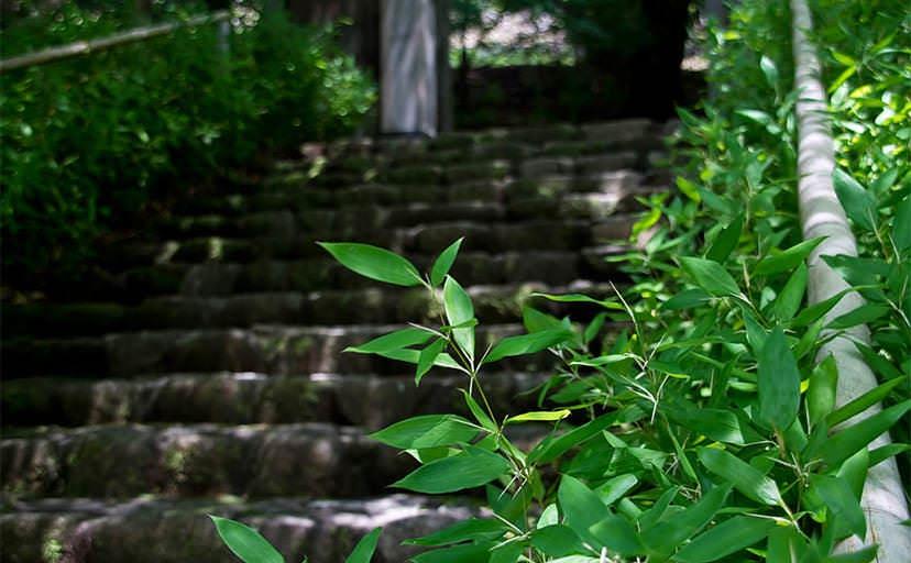 石段(フリー写真)