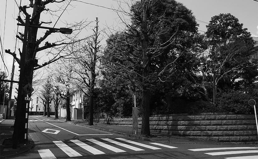 住宅街(フリー写真)