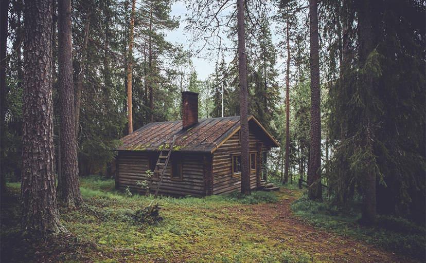 森の小屋(フリー写真)