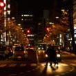 横断歩道(フリー写真)