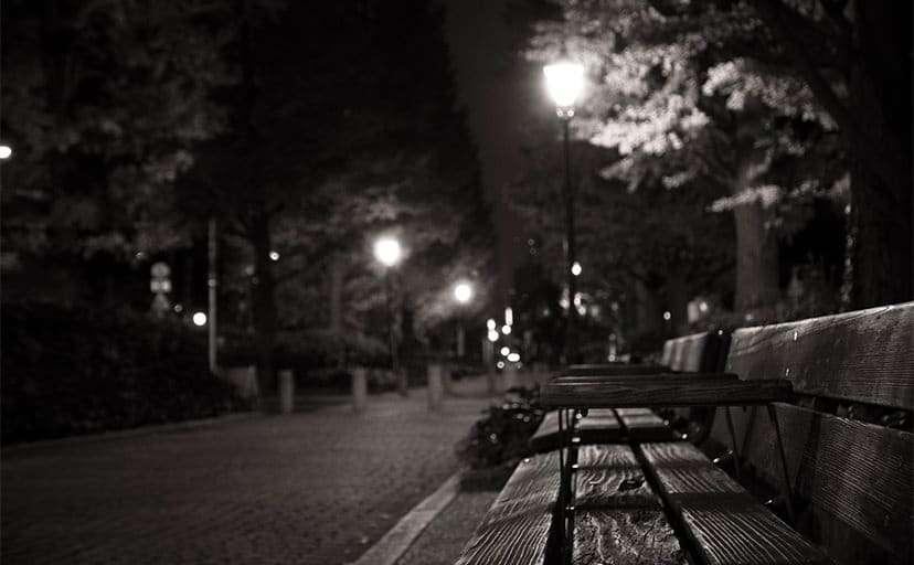 公園のベンチ(フリー写真)