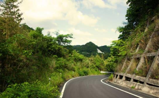 山道(フリー写真)