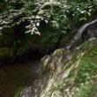滝つぼ(フリー写真)