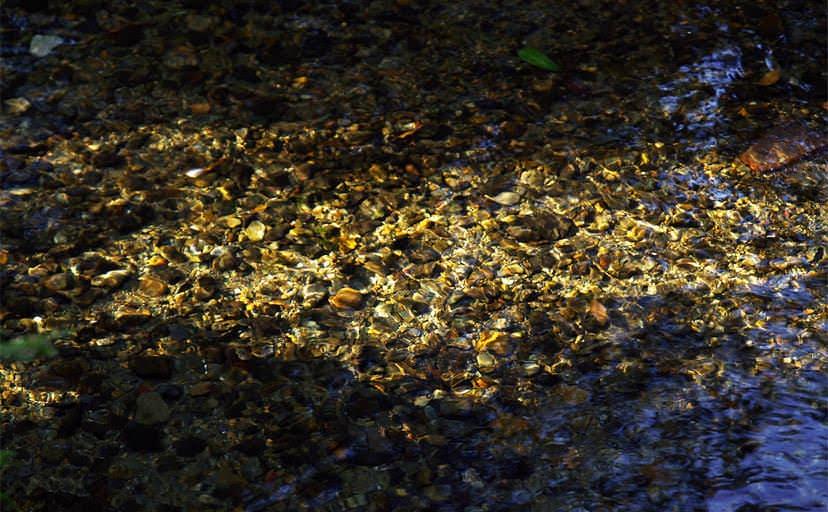 湧き水(フリー写真)