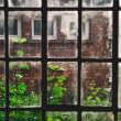 窓(フリー写真)