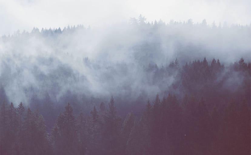 霧の立ち込める山(フリー写真)