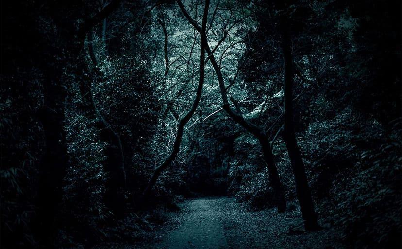 夜の山道(フリー写真)