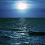 海から聞こえる声